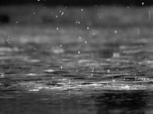 pluie pétrichor